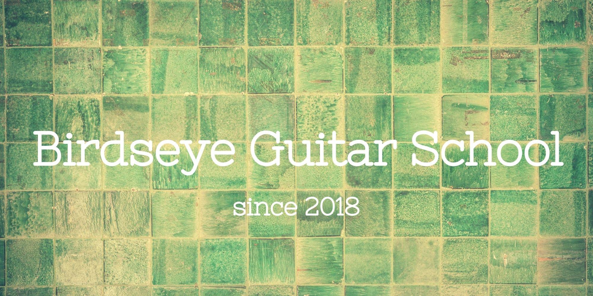 バーズアイギタースクール